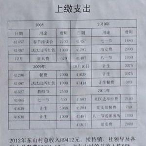 吴川东山村小组年收八万,六成用于接待,接待费过高遭质疑,街道书记表态要调查