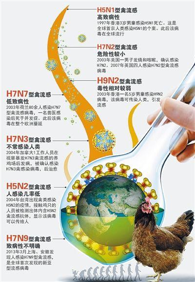 盘点曾经威胁人类的禽流感病毒。